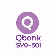 Qbank SY0-501