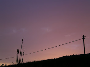 "Photo: with ""dusk"" setting on the camera"