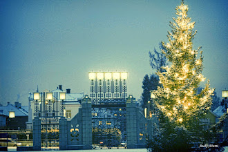 Photo: Merry Christmas:) God jul!  Christmas tree at Vigeland sculpture park in Oslo, Norway.  #WorldwideChristmasAlbum curated by +randy walton and +Louisa Catharine Forsyth