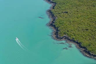 Photo: A powerboat cruises past the shoreline of Rangitoto Island in New Zealand's Hauraki Gulf.  Rangitoto Island is an iconic sight visible from many vantage points in and around Auckland city. The island itself is volcanic and is thought to have formed from a series of eruptions about 600 years ago. It consists almost entirely of scoria and basalt (visible here along the shoreline) yet there is still an abundance of flora that has somehow managed to take hold.  New Zealand's Department of Conservation has undertaken a huge program to eradicate pests such as rats, rabbits, wild cats and stoats from the island, paving the way to reintroduce endangered native species such as tuatara and the very famous kiwi.