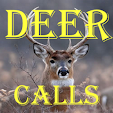 Deer Calls .. file APK for Gaming PC/PS3/PS4 Smart TV
