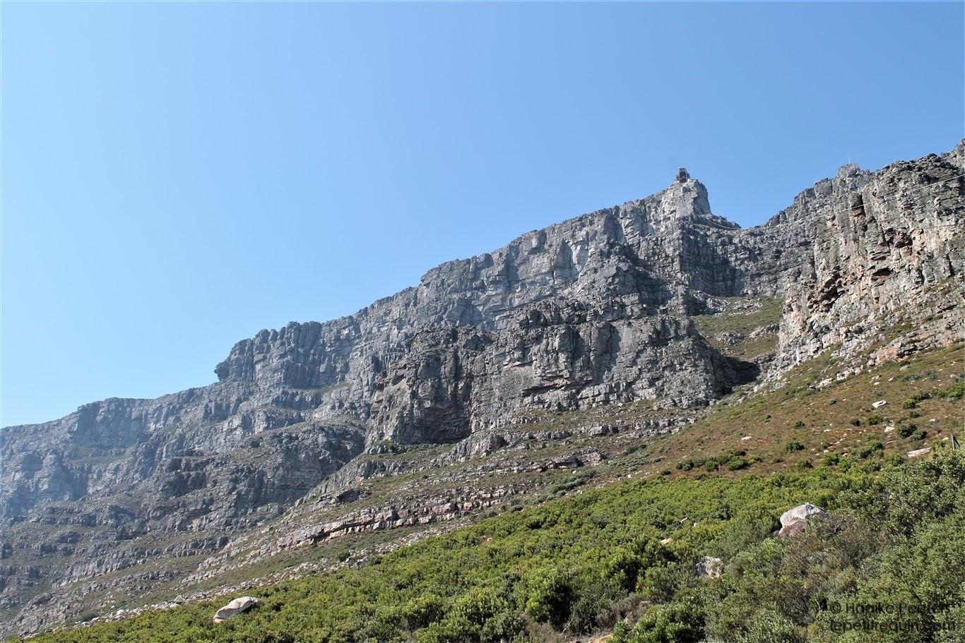 Tafelberg (Le petit requin)