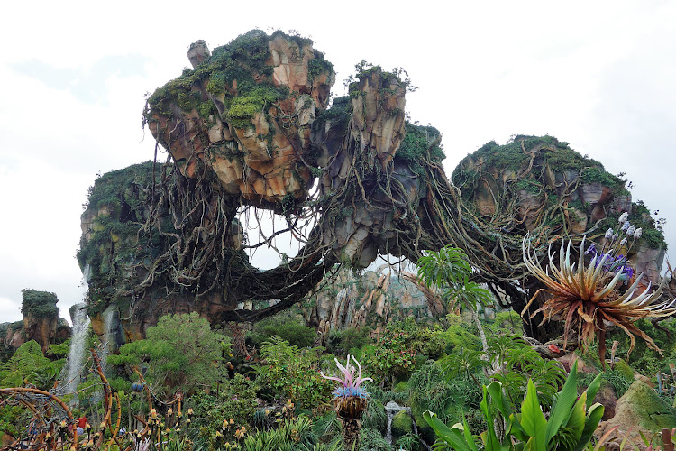 Pandora – The World of Avatar is a themed area inside Disney's Animal Kingdom theme park. (Click to enlarge.)