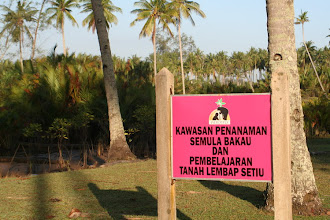 Photo: Setiu Wetlands, nearby Penarik Beach at north Terengganu