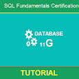 SQL Fundamentals Certification Tutorial icon