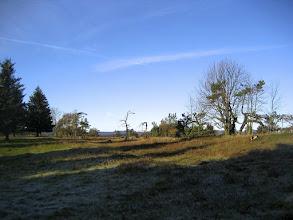 Photo: Hochheide bei Willingen
