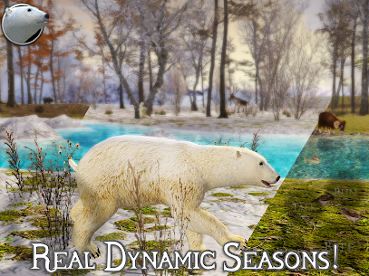 Polar Bear Simulator 2 1.0 (Full Paid) Apk Download 7