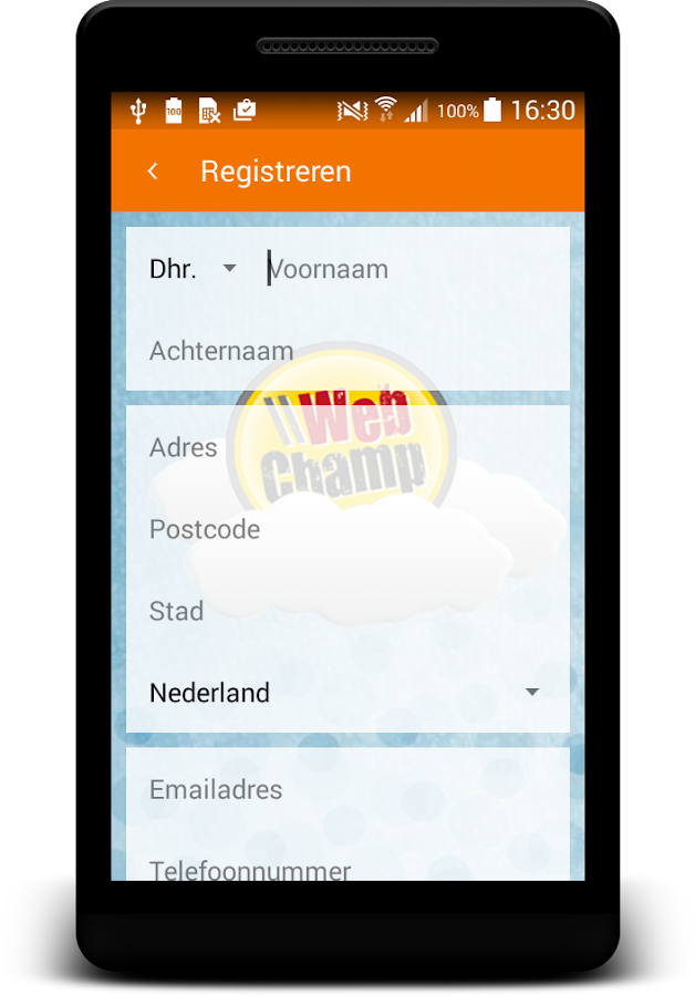 WebChamp Domein Checker- screenshot