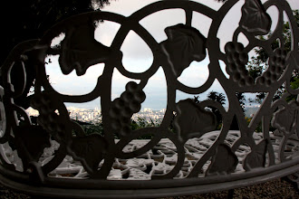 Photo: Year 2 Day 109 - View Through the Wrought Iron Seat