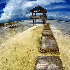 Top of the World by Boyet Lizardo - Landscapes Waterscapes ( olango island, cebu city, philippines, bird sanctuary )