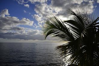 Photo: Ce qui me fascine dans les Antilles est la facilité avec laquelle on peut prendre des photos qui nous font rêver, nous les métropolitains. Un palmier, un bout de mer, le soleil en arrière-plan avec la complicité de quelques nuages, et le tour est joué.