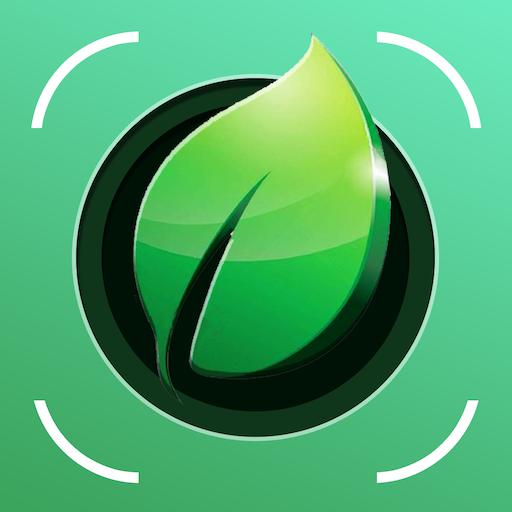 Plant Identification - Identify plants ➡ Google Play Review ✅ ASO | Revenue  & Downloads | AppFollow