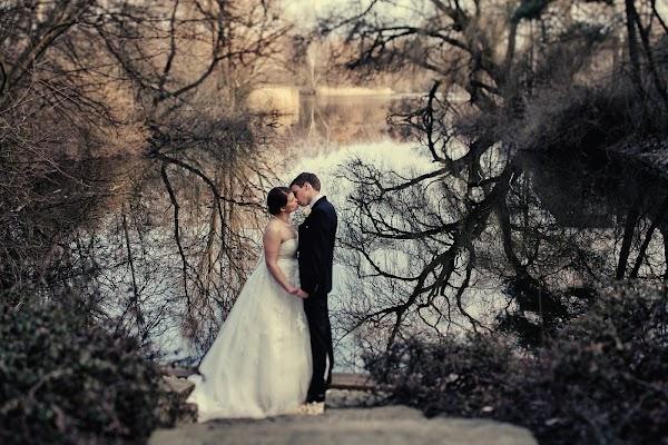 Hochzeitsfotograf Alexander Hahn (hahn). Foto vom 06.01.2016