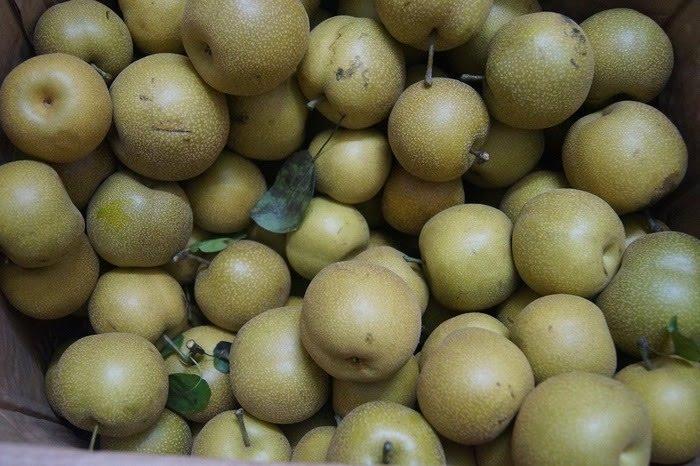 Tứa nước miếng với mùa trái cây Sapa - Ảnh 3