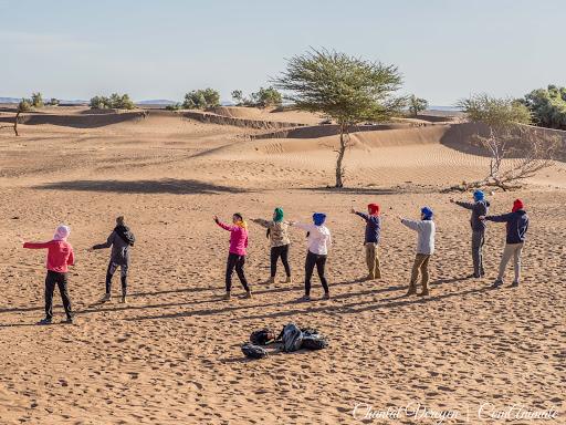 Stage énergétique en connexion avec les dromadaires dans le désert