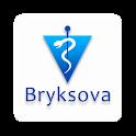 Veterina Bryksova icon