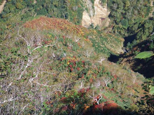 北の谷の紅葉