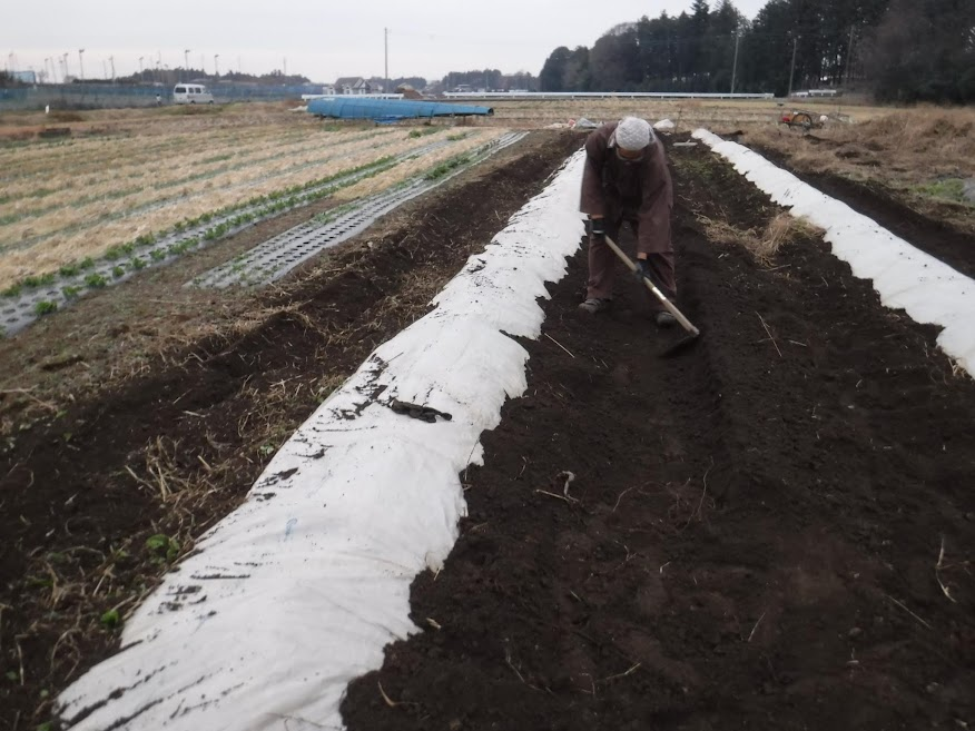耕した土をビニールの上にたっぷり載せる