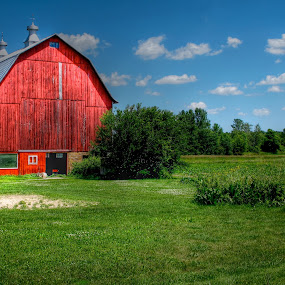 red barn by Fraya Replinger - Buildings & Architecture Other Exteriors ( farm, blue sky, red, barn, green grass,  )