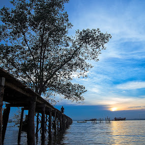 Sunset silhouette by Fariz Mohammad - Landscapes Sunsets & Sunrises