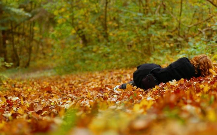 La bella addormentata nel bosco di Lisus