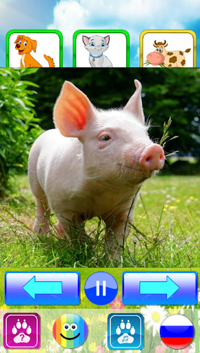Animal sounds. Learn animals names for kids 5.0 screenshots 18