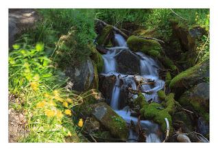 Photo: Eastern Sierras-20120716-496