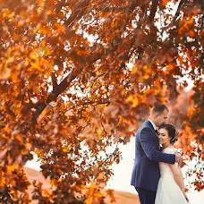 Wedding photographer Aleksandr Larshin (all7000). Photo of 25.12.2016