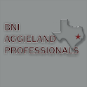 BNI Aggieland Professionals icon