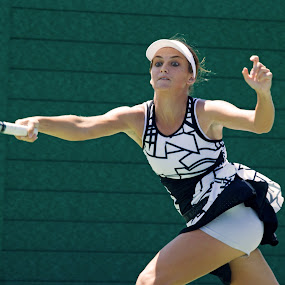 Zuzana by Yves Sansoucy - Sports & Fitness Tennis ( bal, player, white, tennis, black )