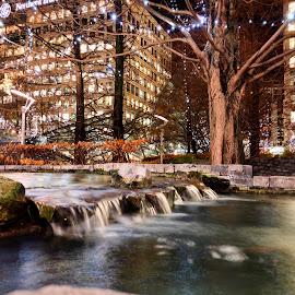 Waterfall  by Pip Holden - City,  Street & Park  Night ( nighttime, waterfall, long exposure, christmas lights )