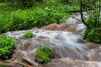 Photo: Stream above Lichen Falls; PEEC Waterfall Hike (0.25-s exposure)
