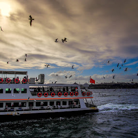 Istanbul by Peyton Blair - Novices Only Landscapes