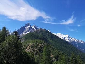 locaux professionnels à Chamonix-Mont-Blanc (74)