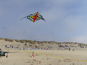 Photo: Large single line delta in front, sport kite staging area behind