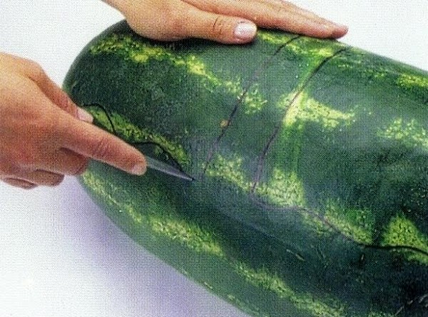 Using a large sharp knife, carefully cut melon along marker line.