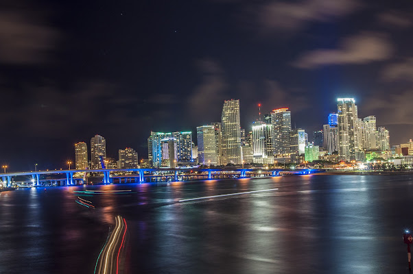 Downtown Miami by night di marchizio