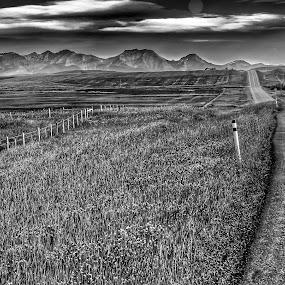 by Rick Pelletier - Novices Only Landscapes (  )
