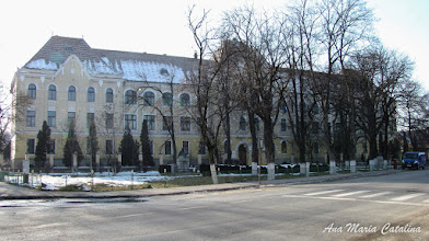 "Photo: Str. Dr. Ioan Ratiu, Nr.111 - Colegiul National ""Mihai Viteazul"" - Bustul lui Teodor Murasanu si bustul lui Pavel Dan - (2011.02.13)"
