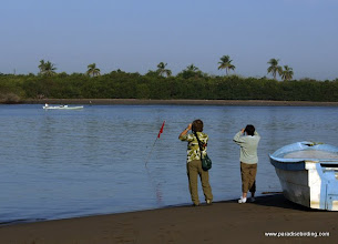 Photo: Birding across from the San Blas boat docks to Peso Island
