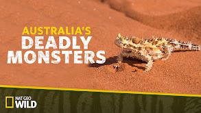 Australia's Deadly Monsters thumbnail