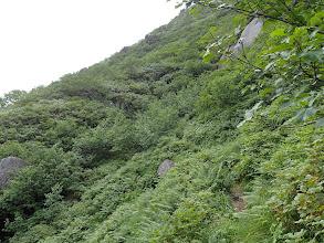 岩稜を左から迂回