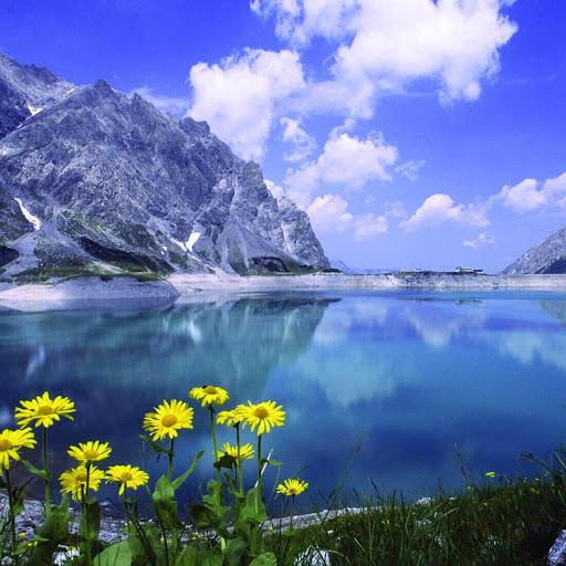 Download perfect nature live wallpaper for pc - Nature wallpaper apk ...
