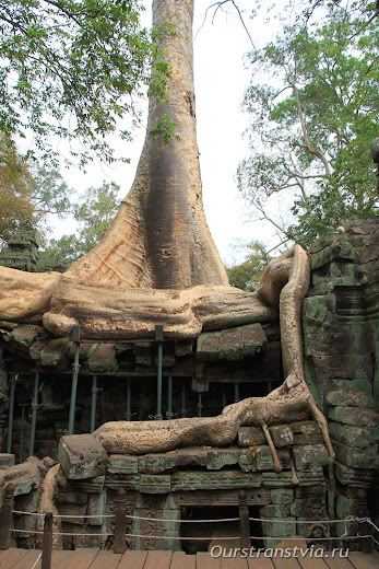 Та Пром - храмы малого круга Ангкора