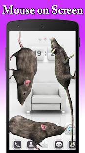 Mouse on Screen Scary Joke - náhled