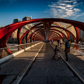 Calgary by Zoran Mrđanov - Buildings & Architecture Bridges & Suspended Structures (  )
