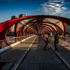 Calgary by Zoran Mrđanov - Buildings & Architecture Bridges & Suspended Structures (  )