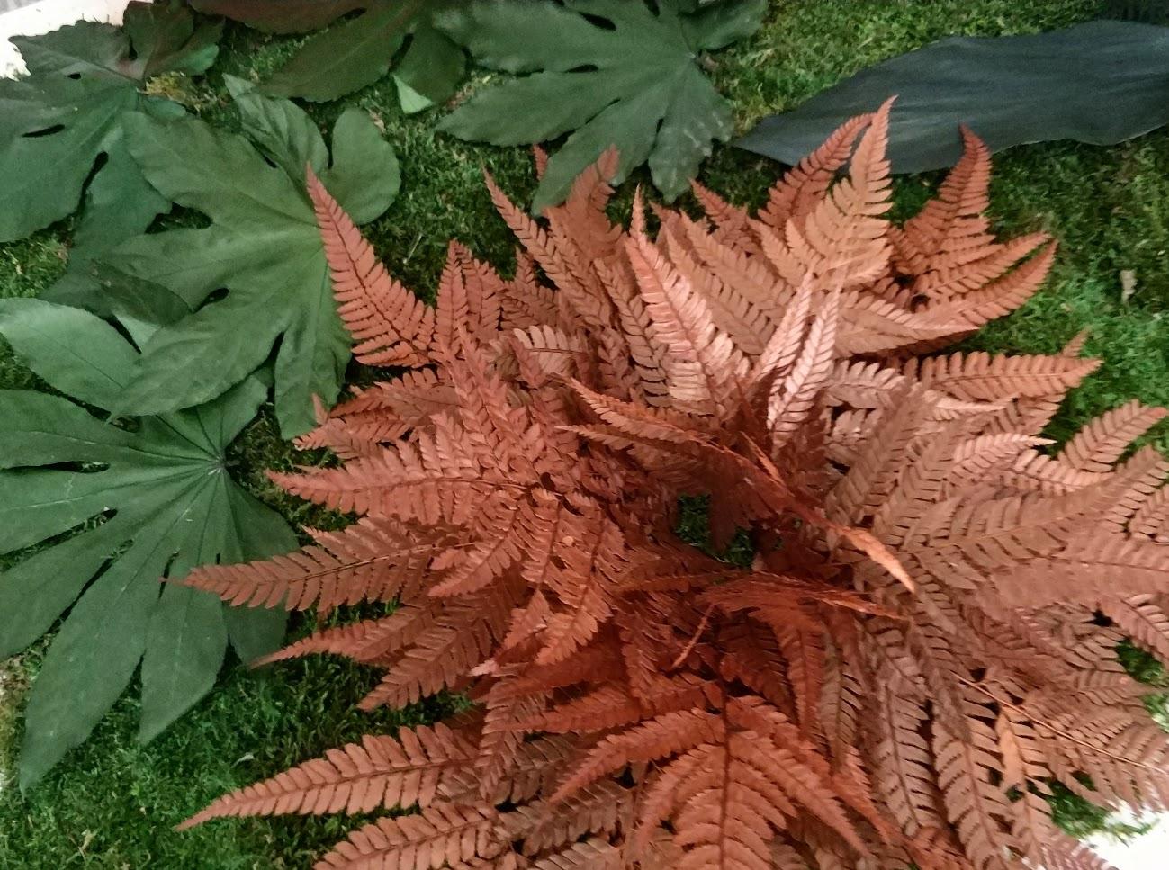 Plantas conservadas para jardines verticales