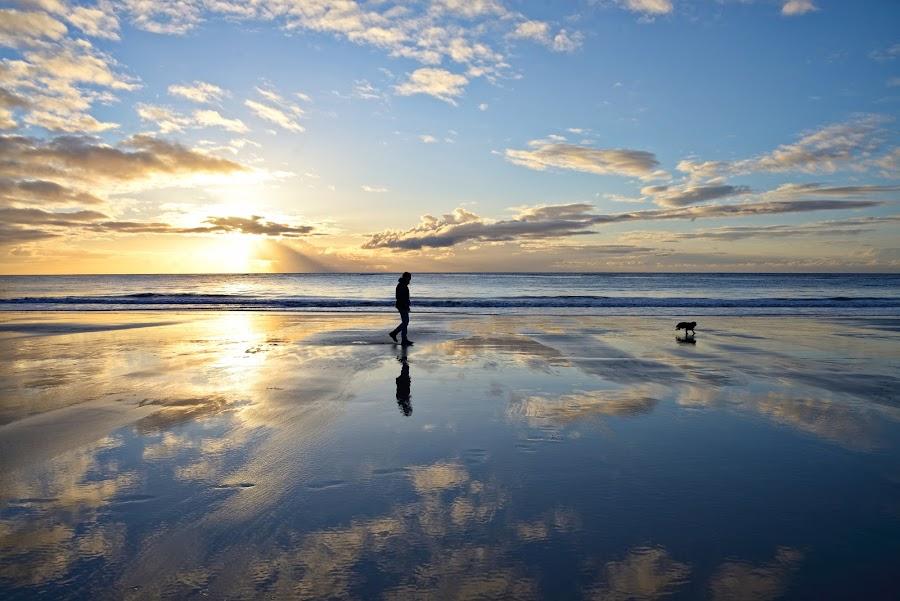 Walk on the beach by Marius Birkeland - Landscapes Beaches ( clouds, reflection, sky, beach, sun,  )