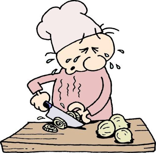 9 Tips To Cut An Onion Without Tears Recipe